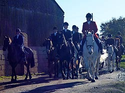New Barn Farm horses at Knepp Castle meet